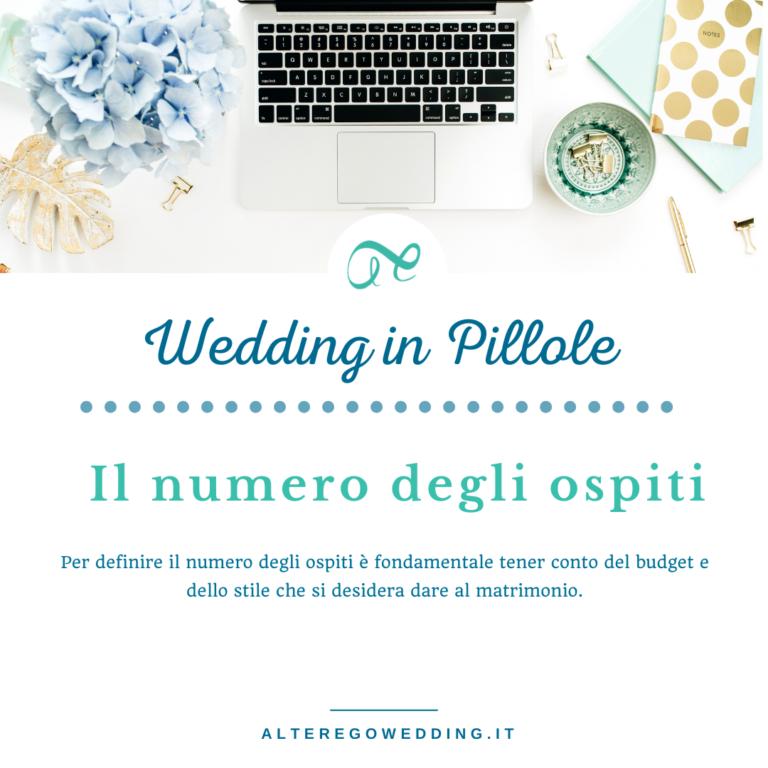 _Wedding IN PILLOLE (3)